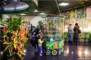 Казанский парк Тропических бабочек